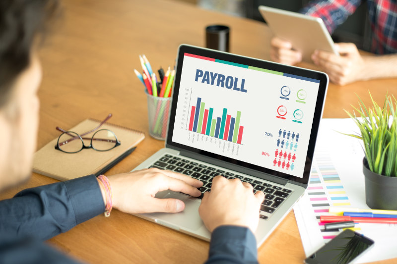 Types of payroll reports